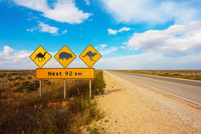 Australie-nullarbor-plain-698x465